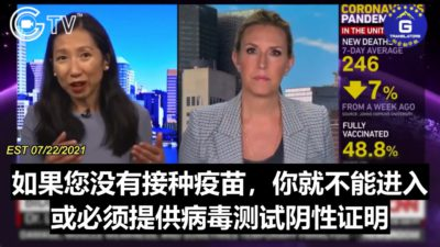Vaccine Passport? CNN's Dr. Leana Wen: Requests for Either a Negative Test or No Admittance for the Unvaccinated